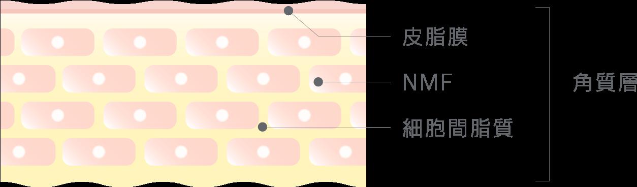 7種の敏感肌ケア成分